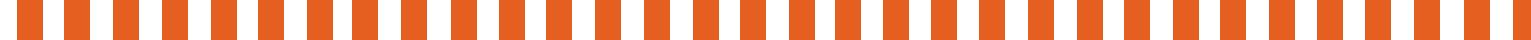 Divider Orange half