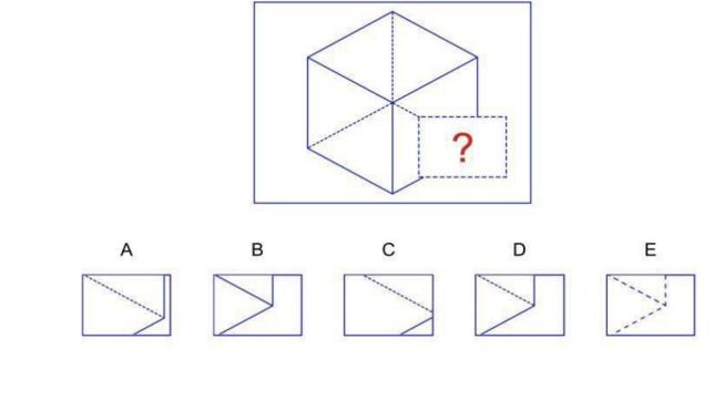 nnat test 2nd grade sample questions. Black Bedroom Furniture Sets. Home Design Ideas