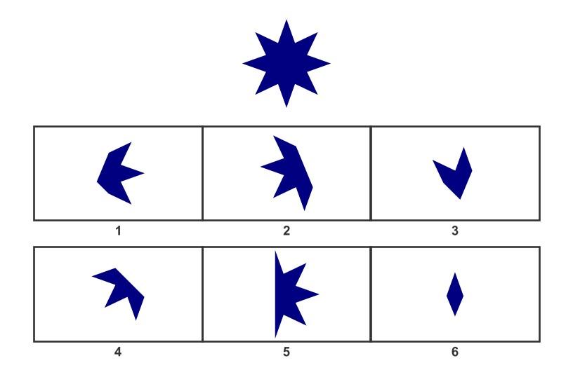 WISC Visual Spatial Reasoning-Age 12