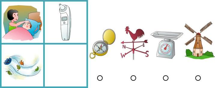 WISC Fluid Reasoning-Age 13