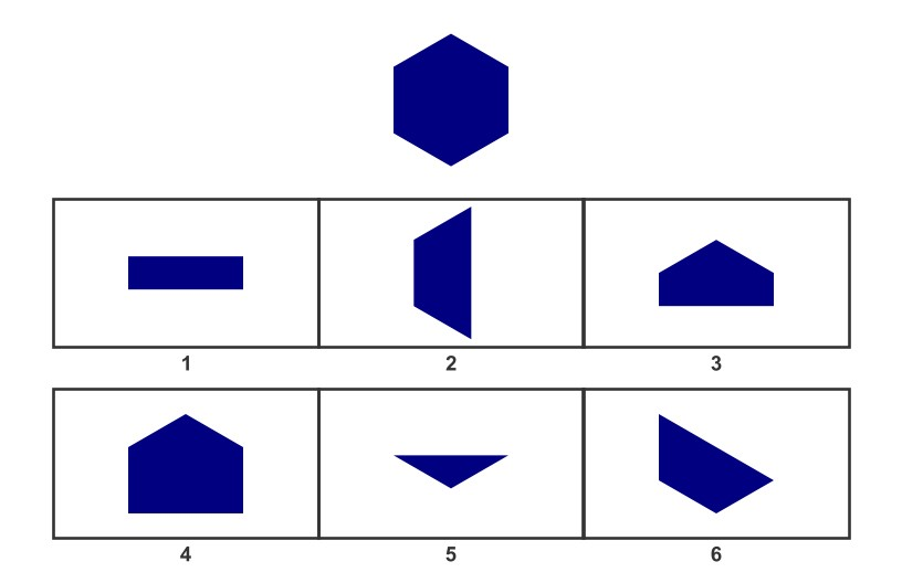WISC Visual Spatial Reasoning-Age 8