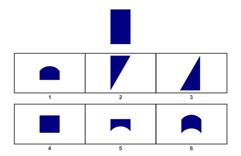 WISC Visual Spatial Reasoning-Age 9