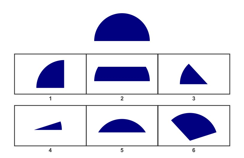 WISC Visual Spatial Reasoning-Age 10