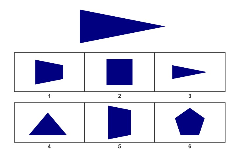 WISC Visual Spatial Reasoning-Age 7