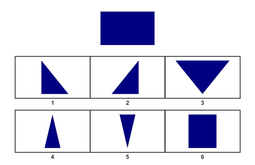 WISC Visual Spatial Reasoning-Age 6