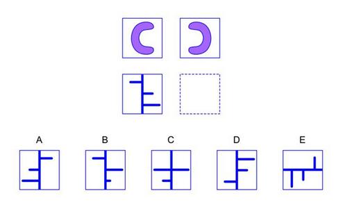 nnat2 practice question