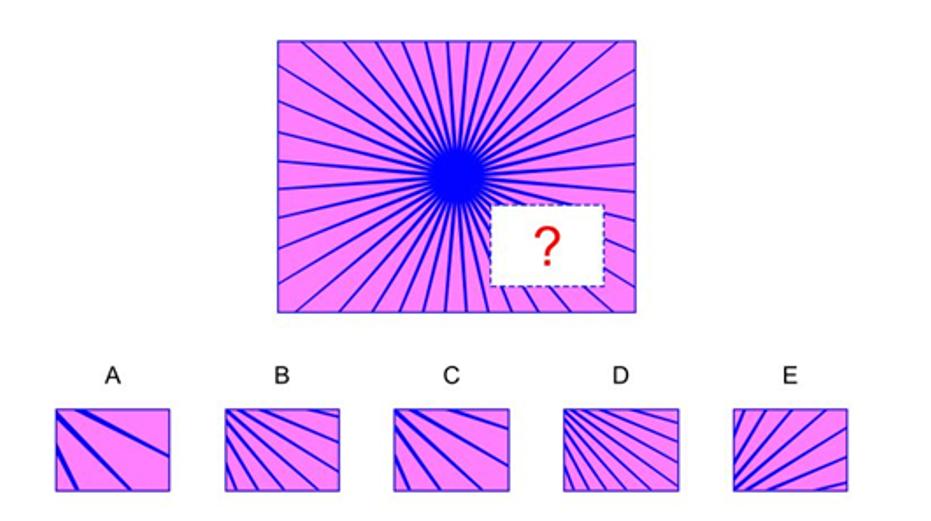 nnat2 practice questions
